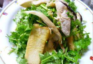 鶏胸肉と厚揚げ、コリアンダーサラダ風.jpg